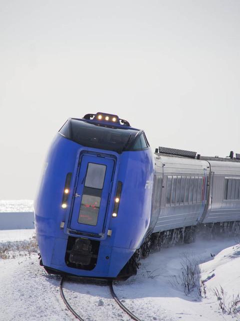 C1301266309lm4c